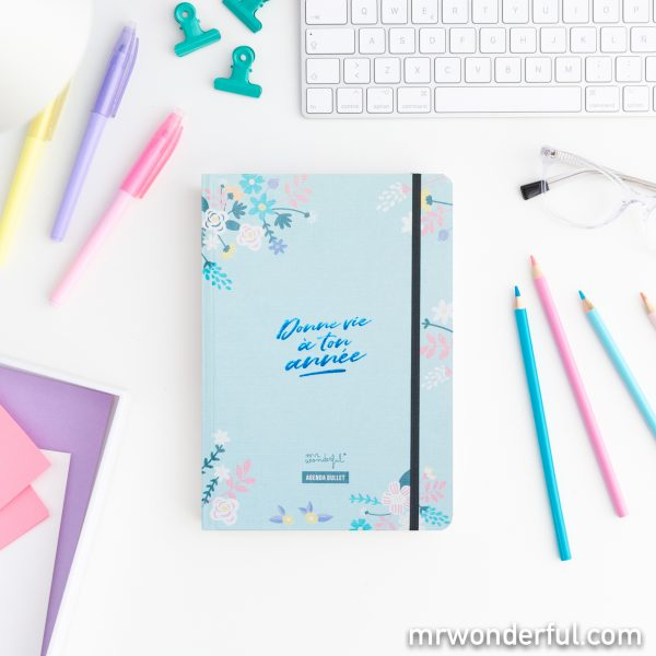 agenda bullet bujo DIY mr wonderful