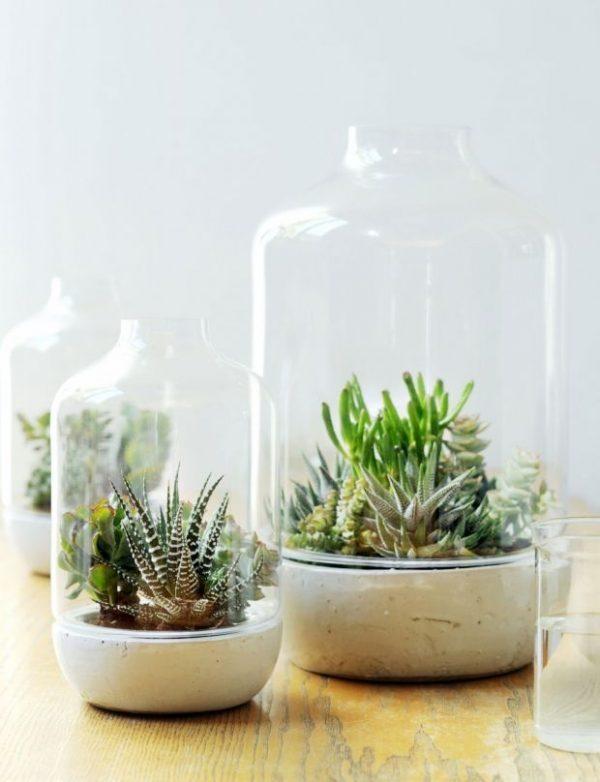 scatena il tuo pollice verde con queste idee floreali per la casa il blog di mr wonderful. Black Bedroom Furniture Sets. Home Design Ideas