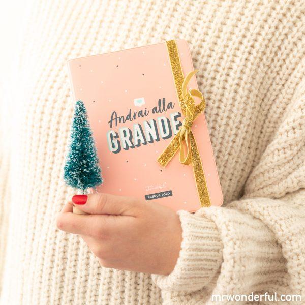 Idee Di Regali Di Natale.Regali Di Natale Idee Dal Successo Assicurato Il Blog Di Mr Wonderful