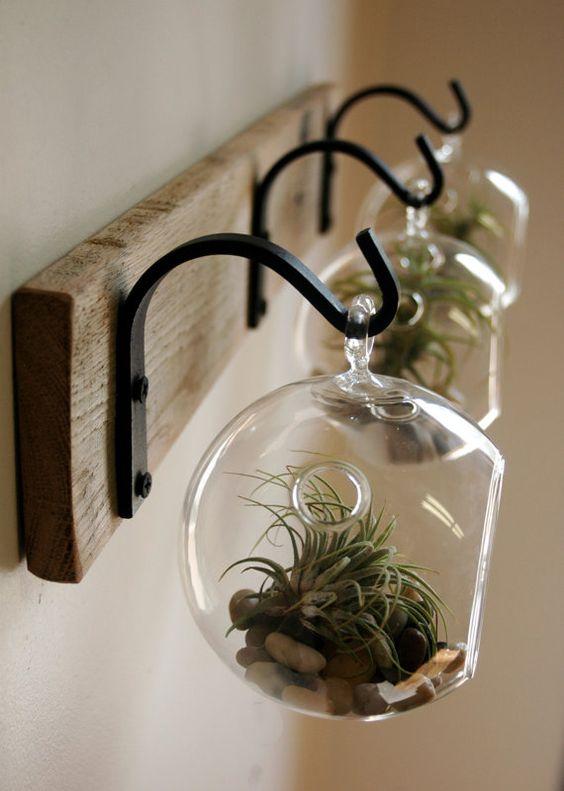 Ideias de decoração para casa com plantas