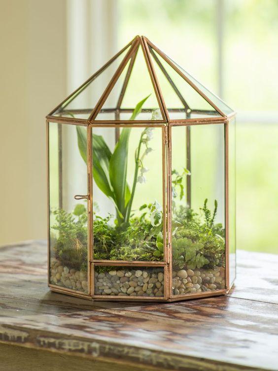 Ideias de decoração com mini jardins em casa