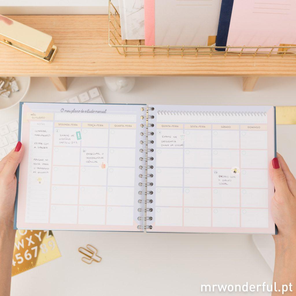 Plano de estudo mensal