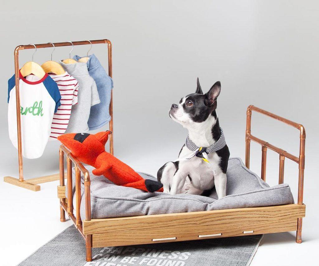 Camas originais para cães