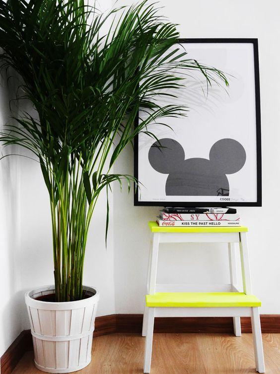 móveis decorativos para livros e revistas