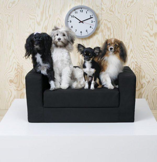 Sofá para animais