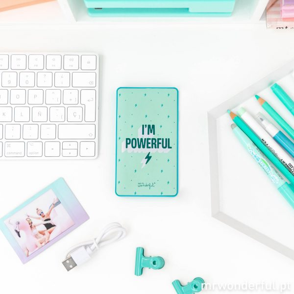 power bank mr wonderful